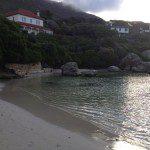 Penguin Swimming Beach