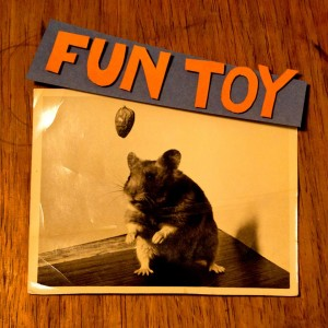 Fun Toy EP Cover