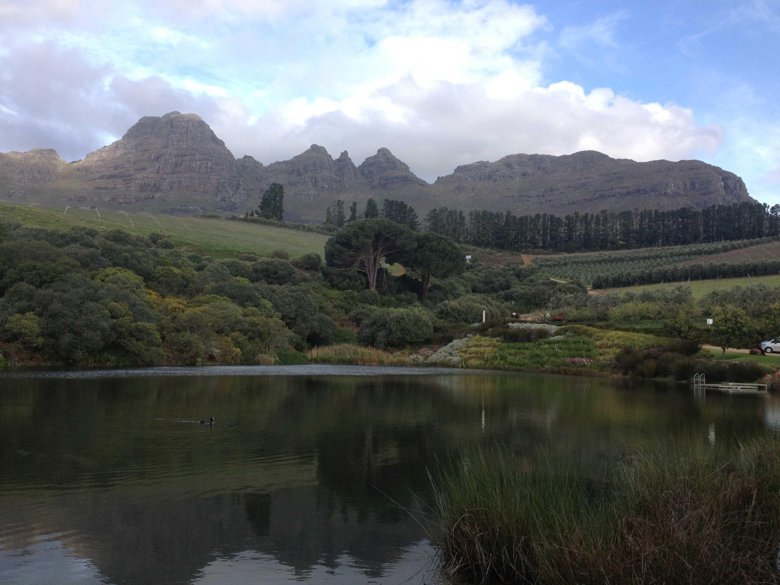 Hidden Valley Wine Estate and Overature