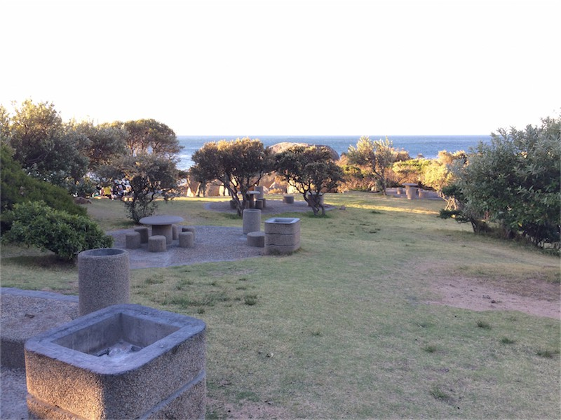 bbq areas on grass at beach