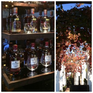 Van Ryns brandy bottles on a wooden shelf with red leaved autumn tree tunnel