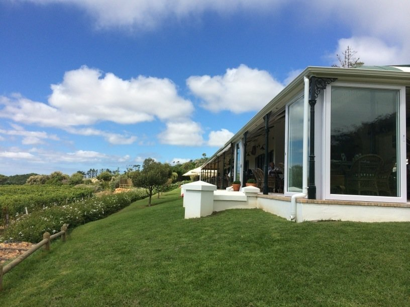 glass farm house on green grass bank overlooking vineyards with blue skies and white fluffy clouds