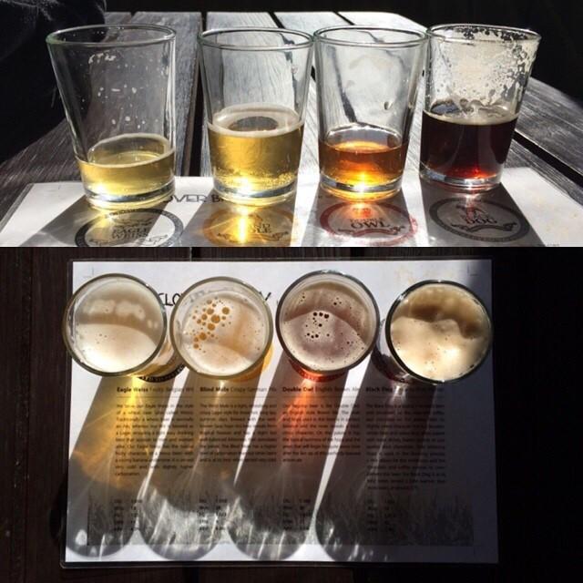 Wild Clover Farm Beers