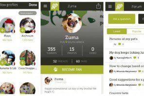 [App] Yummy Pets