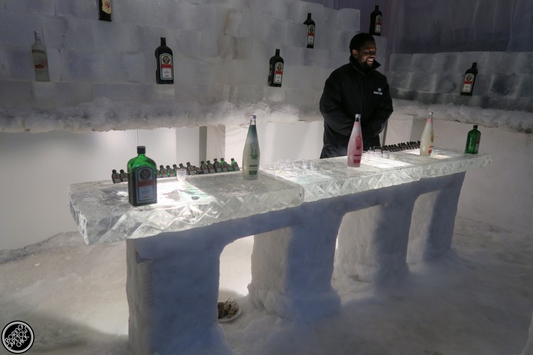 Ice bar at Snow World Grand West