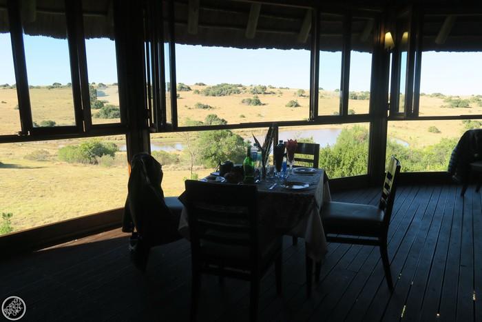 Kwantu Game Reserve - Morning Safari Drive - Boring Cape Town Chick 46