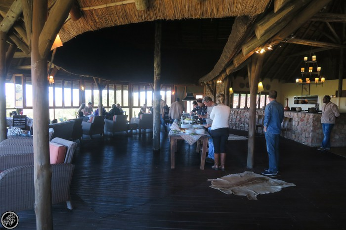 Kwantu Game Reserve - Morning Safari Drive - Boring Cape Town Chick 47