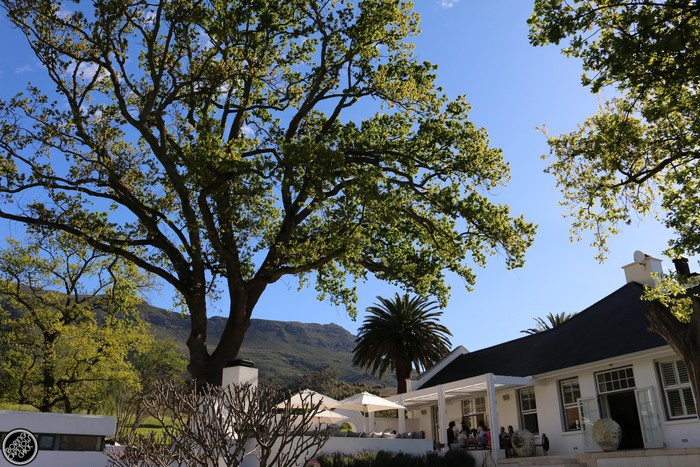 oldenburg-vineyards-guest-house-chef-bertus-basson-boring-cape-town-chick-30