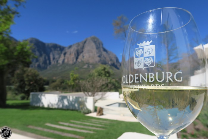 oldenburg-vineyards-guest-house-chef-bertus-basson-boring-cape-town-chick-41