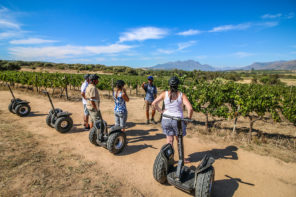 Rocking the Spier Segway Tour